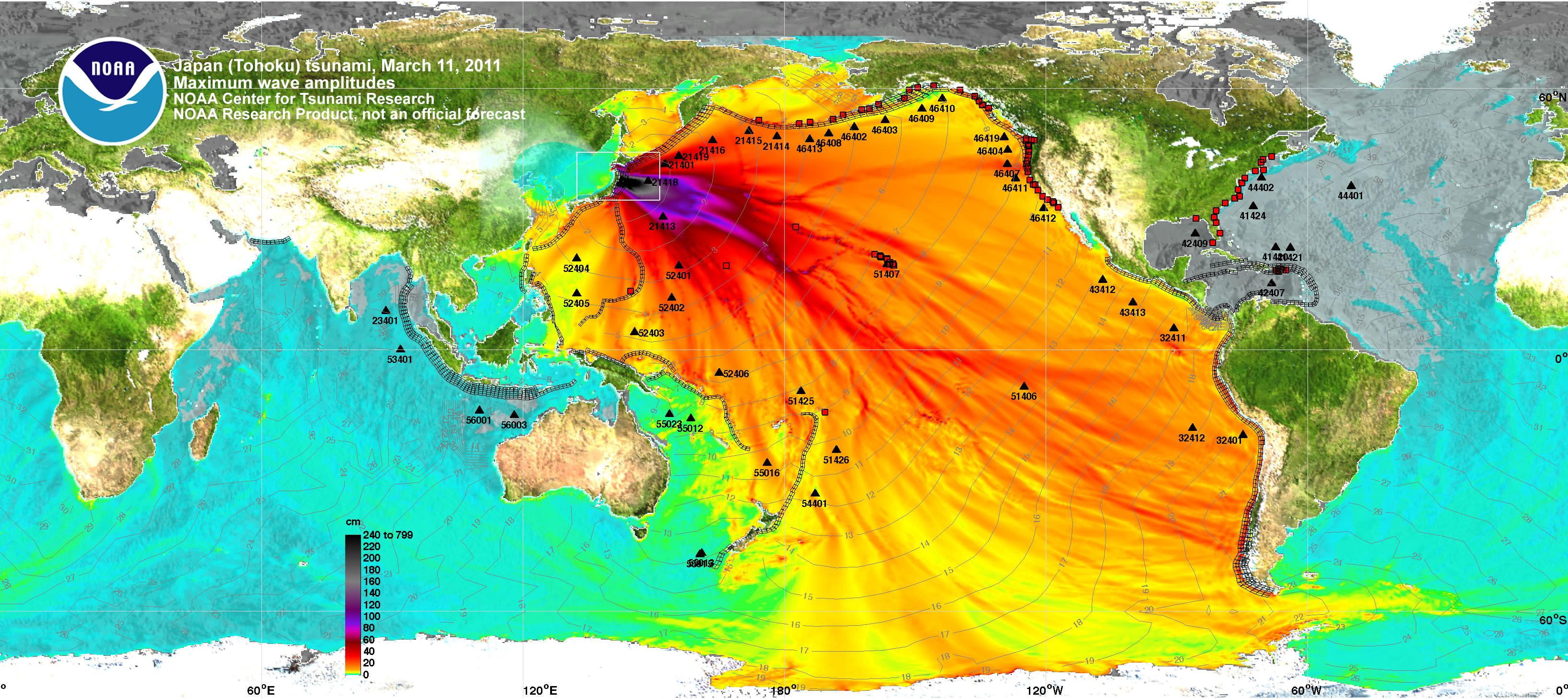 Radioaktive Strahlung Auswirkungen Auf Die Umwelt