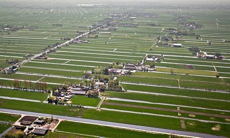 Netherlands-Kamerik-Farms-011